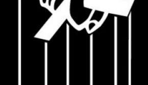 logo_shellter